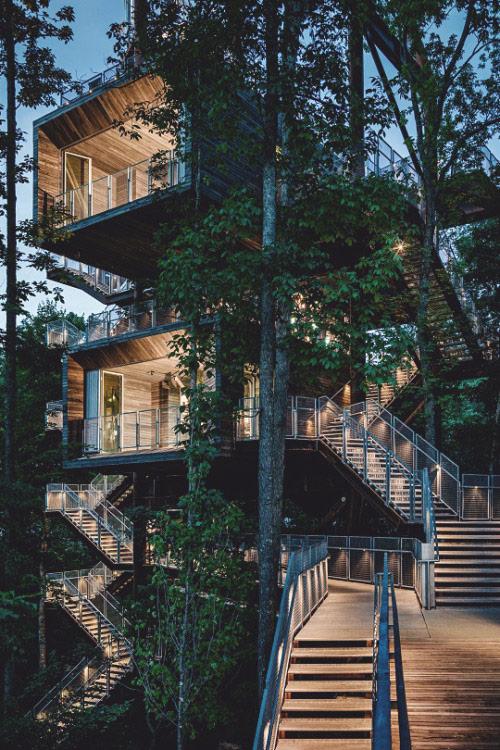 Modern Bird Nest House