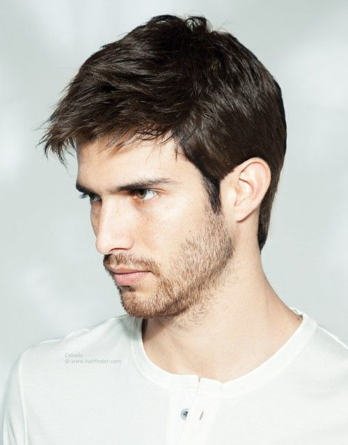 Classy tapered haircut for thick hair