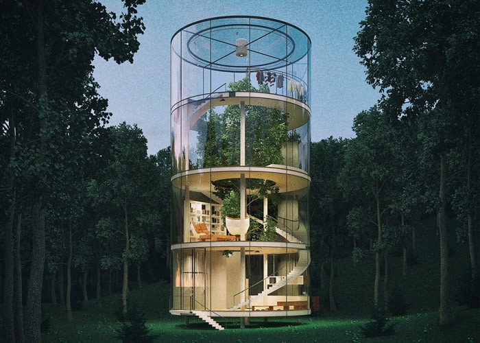 Transparent Tree House In The Forest