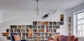 cat lover house
